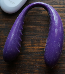 A very dirty We-Vibe 3; the shiny silicone attracts dust and fur in minutes. Wouldn't a sex toy wipe be great right about now?