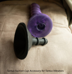 Tantus Suction Cup Dildo Attachment shown with a Tantus Echo vibrator, bullet removed.