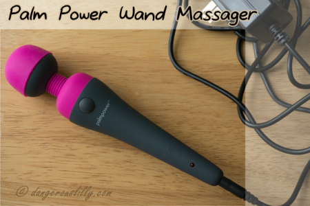 PalmPower Wand Massager